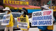 Superviviente de la Polonia comunista gana un premio de derechos humanos por apoyar a Falun Gong