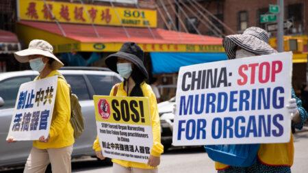 China no responde a preguntas de la ONU sobre sustracción forzada de órganos, dicen ONG