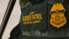 Detienen más de 15,000 inmigrantes ilegales en una semana tras repunte de cruces de grandes grupos
