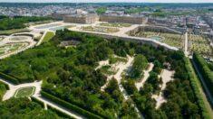 Florecer de nuevo: El jardín privado de María Antonieta es restaurado en el Palacio de Versalles