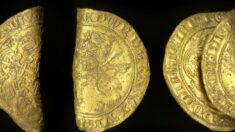 Buscador de tesoros del Reino Unido encuentra dos raras monedas de oro de la época de la peste negra