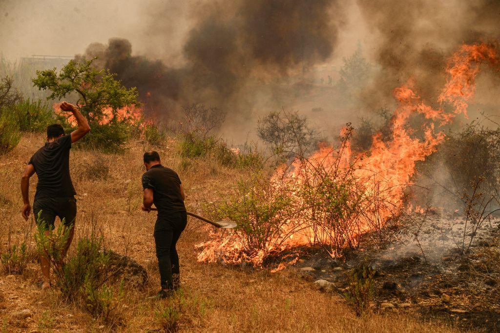 Tres muertos en un incendio forestal en el sur de Turquía