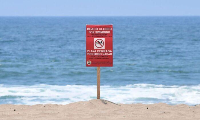 Decenas de playas de EE. UU. cierran en julio por altos niveles de bacterias tóxicas