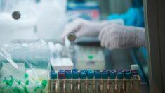 Mayoría de pacientes recuperados de COVID tienen inmunidad amplia y fuerte: Estudio