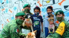 Ejército Mexicano crea refugio para perritos en escuela que iba a ser demolida: ¡Los dan en adopción!