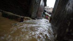 Lluvias dejan al menos 16 muertos y decenas de desaparecidos en Venezuela