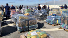 EE.UU. decomisa más de 1400 millones de dólares en cocaína y marihuana