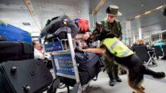 """Policía de Colombia detiene a 4 personas que enviaban """"correos humanos"""" de droga hacia EE. UU. y México"""