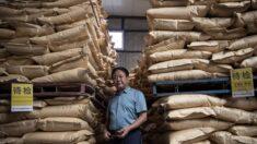 """De multimillonario a prisionero chino: Destruyen el """"paraíso"""" del magnate agrícola Sun Dawu"""