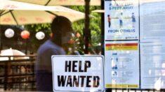 Crisis en las contrataciones perjudica los ingresos de las pequeñas empresas