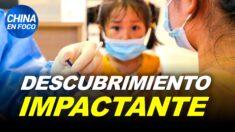 China en Foco: Algo pasa con la vacuna china después de 6 meses: resultados de estudio