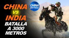 China vs. India: Chocan los 2 ejércitos más grandes del mundo | Madre vende su hijo a un laboratorio