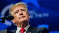 Trump demanda al New York Times y a Mary Trump por un artículo sobre sus impuestos