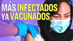 Al Descubierto: El 74% de infectados estaban vacunados según nuevo estudio del CDC en Massachusetts