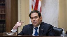 """Rubio: """"Único objetivo"""" de Biden es hacer concesiones con Cuba tras nuevo subsecretario interino de Estado"""