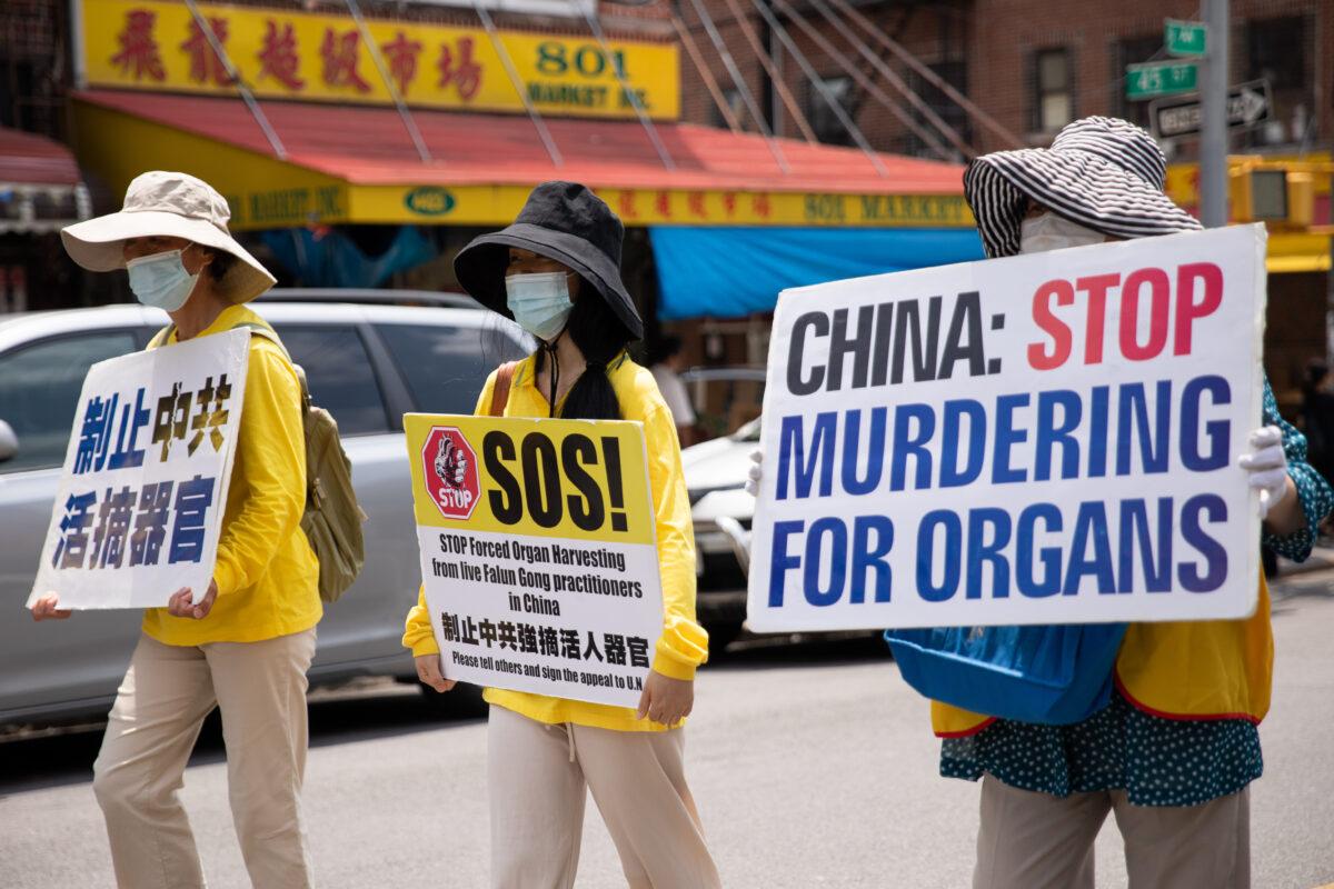 Médicos de EE.UU. no hablan sobre la sustracción de órganos en China por temor a represalias: Doctor