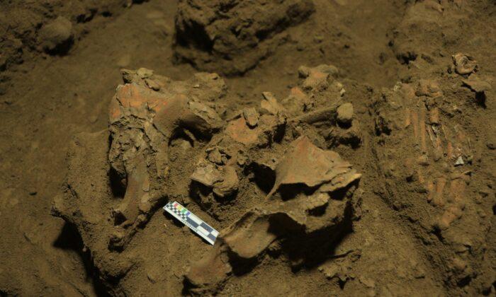 Descubrimiento de restos de 7000 años de antigüedad descifra el misterio de grupo humano desconocido