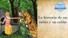 Antiguos cuentos de sabiduría: La historia de un sabio y un ratón