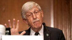 Director de los NIH cree que vacunas de refuerzo de Pfizer se ampliarán a pesar de consejo de la FDA