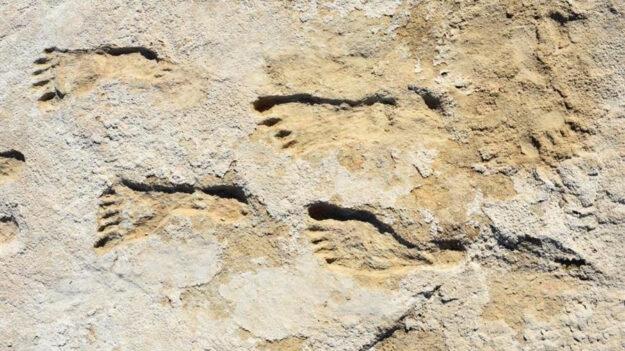 Huellas en Nuevo México indican presencia humana en América hace 23,000 años