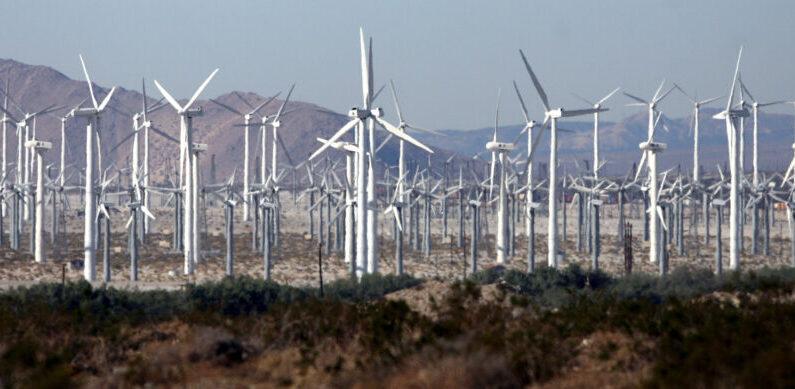 Un parque eólico cerca de Palm Springs, California, el 30 de diciembre de 2006. (Gabriel Bouys/AFP vía Getty Images)