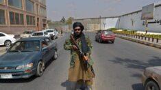 Talibanes cuelgan cuatro cuerpos en plaza pública al oeste de Afganistán: Testigos