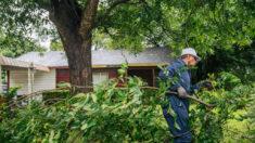 Nicholas se convierte en depresión tropical sobre Texas y seguirá con lluvias