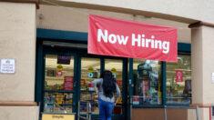 Ofertas de empleo siguen aumentando y están a punto de batir un nuevo récord: Indeed