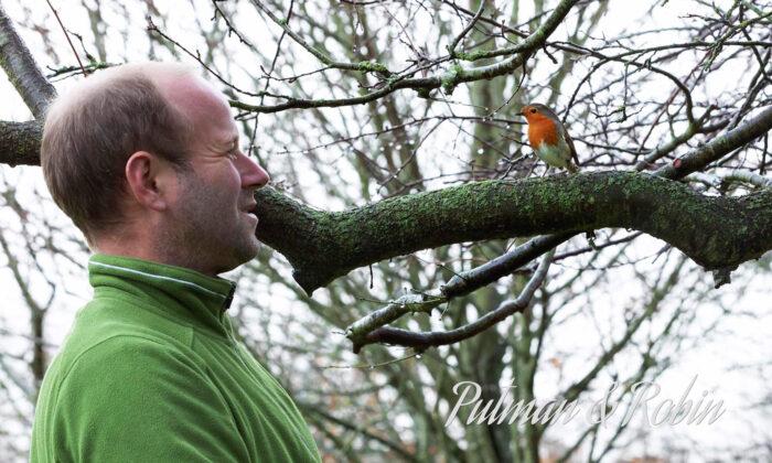 Jardinero crea increíble e inquebrantable amistad con un pájaro petirrojo
