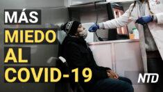 NTD Noticias: Polémicas declaraciones médicas sobre los casos por COVID-19