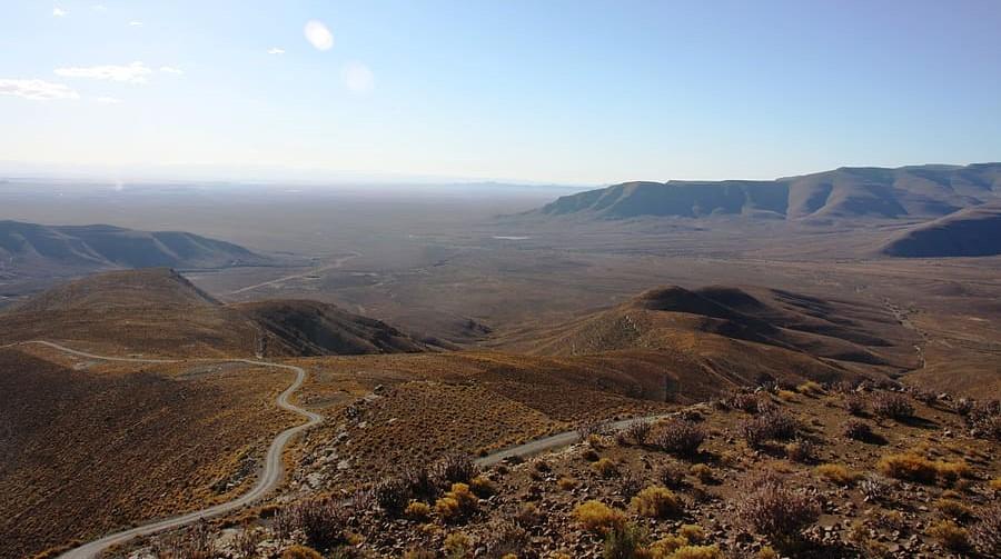 Singular bioma de desierto sudafricano tiene organismos que no se encuentran en otro lugar de la Tierra