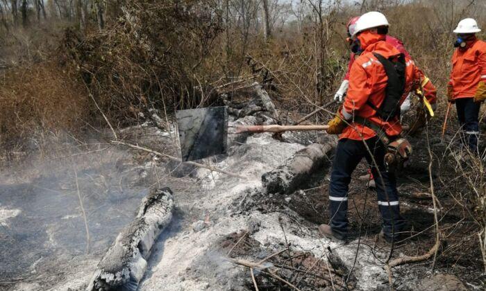Demanda de carne de res boliviana por parte de China genera deforestación e incendios forestales