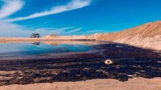 Un gran vertido de crudo golpea las playas del sur de California