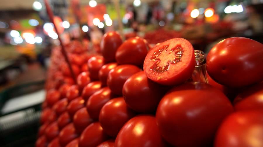 México vigilará prohibición de entrada de tomates frescos a EE.UU.