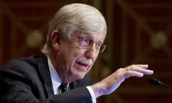 El Dr. Collins parece admitir que los NIH financiaron experimentos de ganancia de función en Wuhan