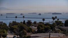 Cifra récord de barcos contenedores en espera en puertos de Long Beach y Los Ángeles: Empresario