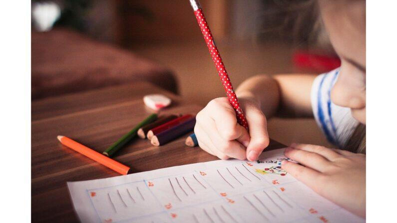 ¿Qué significa realmente la educación y cuál debe ser su resultado final?  Imagen ilustrativa. (Pixabay)