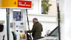 Precios de gasolina en EE.UU. alcanzan nuevo máximo de 7 años y no se prevé que bajen