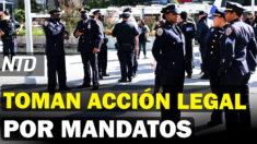 NTD Noticias: Policía y DEA de NY toman acción legal por mandatos; Récord en arrestos fronterizos