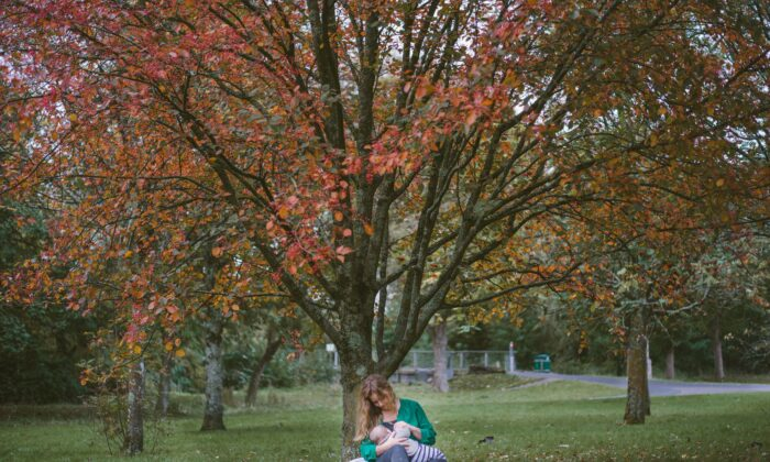 Leche materna da positivo en sustancias químicas que causan defectos de nacimiento