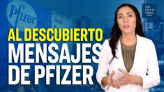 Mensajes al descubierto de ejecutivos de Pfizer que ocultan al público sobre células fetales