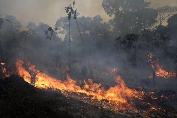 Um incêndio queima ao longo da estrada para a Floresta Nacional de Jacunda, perto da cidade de Porto Velho, na região de Vila Nova Samuel, que faz parte da Amazônia brasileira, em 26 de agosto de 2019 (Eraldo Peres / AP Photo)