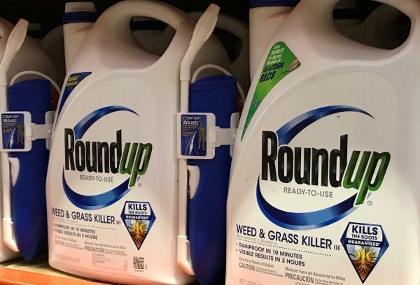 O Roundup da Bayer está à venda em Encinitas, Califórnia, 26 de junho de 2017 (Mike Blake / Reuters)